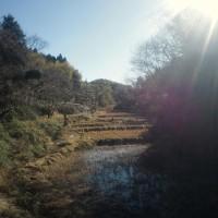 tanada_20130105